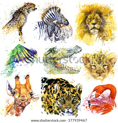 African animals set. Watercolor animal. Zebra, parrot, cheetah, giraffe, flamingos, lion, lion, jaguar, crocodile, alligator - stock photo