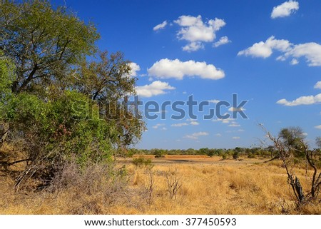 African Landscape in Kruger National Park, South Africa - stock photo