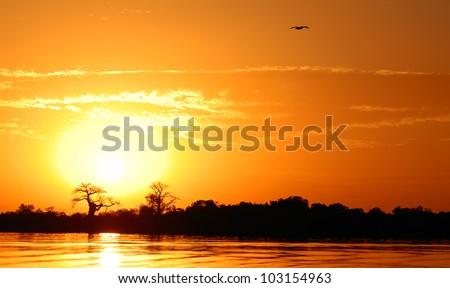 African landscape, Senegal, sine saloum - stock photo