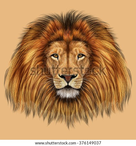 African Lion. Illustrated portrait of Lion on tan background. - stock photo