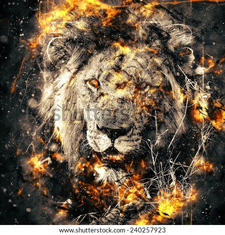 African lion illustration with fire - stock photo