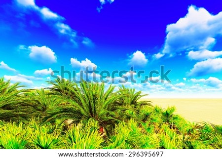 African oasis - stock photo