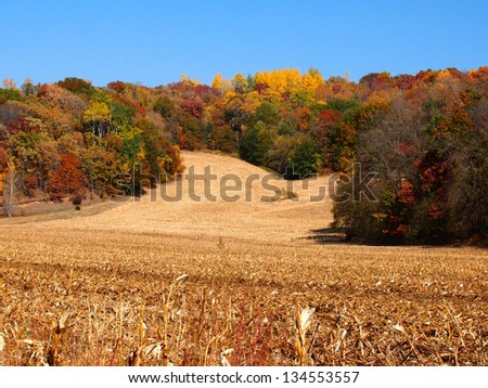 After the harvest - stock photo