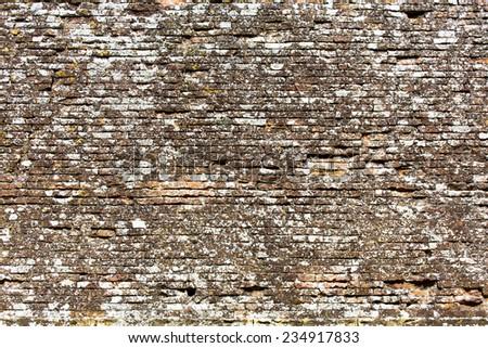 Aged brick wall background - stock photo