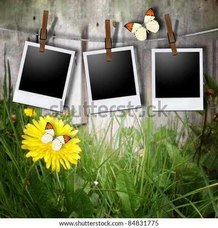Aged photo frames with rope on nature background - stock photo