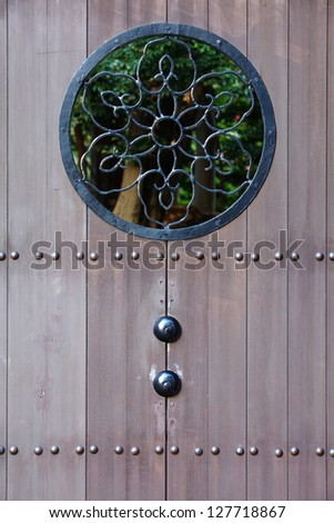 Aged wooden door - stock photo