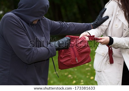 Aggressive thief in the park snatching a purse - stock photo