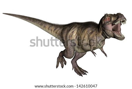 Aggressive tyrannosaurus rex with open mouth in white background - stock photo