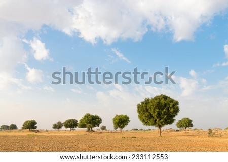 Agricultural fallow land field under blue sky in thar desert (great indian desert) - stock photo
