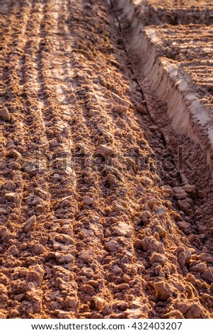 Agricultural field background - stock photo