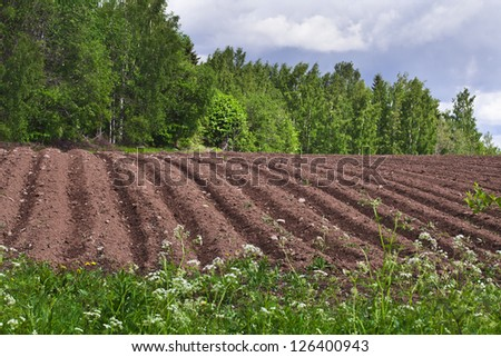 agricultural fields landscape background - stock photo