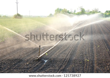 Agricultural Irrigation - stock photo