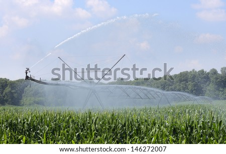 Agricultural irrigation equipment watering a corn crop - stock photo