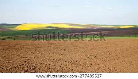 Agricultural land plowing, wheat and other crops against the blue sky - stock photo