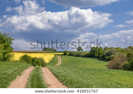 agricultural road with cloudy sky above - stock photo