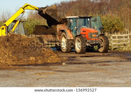 agricultural scene of farmer loading his commercial muck spreader with manure before fertilising his field - stock photo