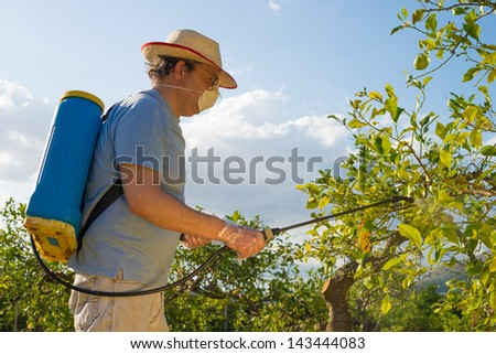 Agricultural worker in a citrus plantation spraying pesticide - stock photo