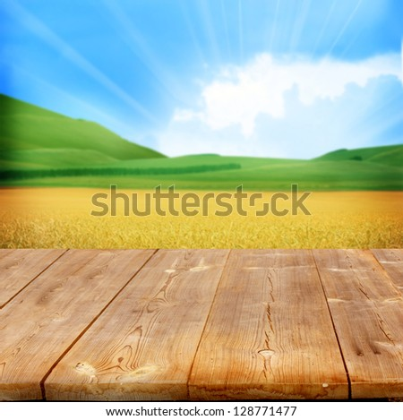 agriculture background with wooden planks - stock photo