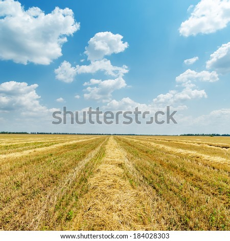 agriculture field after harvesting and clouds over it - stock photo
