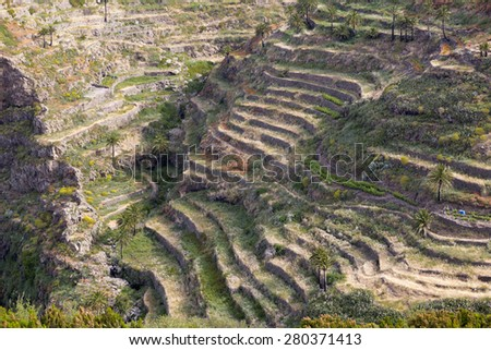 Agriculture on Gomera island, Spain - stock photo