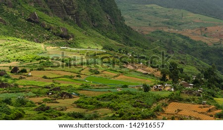 Agriculture on Terrace Fields in Central Sri Lanka - stock photo