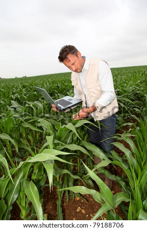 Agronomist analyzing cereals with laptop computer - stock photo