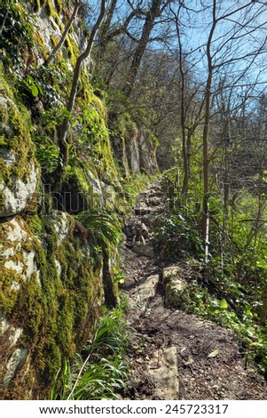 Agura gorge on the territory of the Khosta district of Sochi in Krasnodar Krai of Russia. Hiking mountain travel route - stock photo