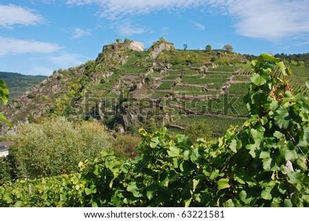 Ahrtal (Ahr Valley) vineyards on rocky slopes - stock photo