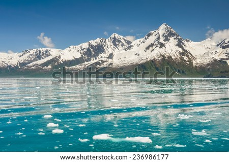 Aialik bay, Kenai Fjords national park, (Alaska) - stock photo