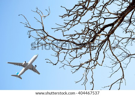 Aircraft flying through dry tree, blue sky background - stock photo