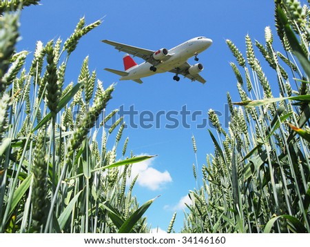 Airplane landing over a wheat field - stock photo