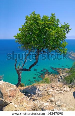 Akamas peninsula (Aphrodite's bathes, Cyprus). - stock photo