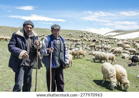 Akhalkalaki, Georgia - May 07, 2015: Shepherds and flock of sheep in mountain pastures  - stock photo