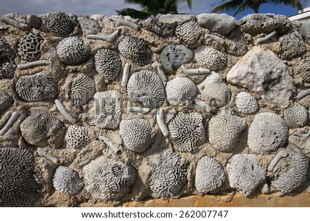 akumal riviera maya beach famous for turtles - stock photo