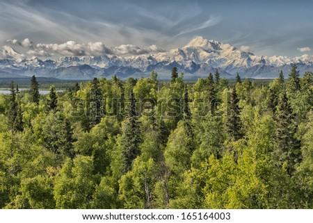 Alaska Denali Park Mount Mc Kinley panorama - stock photo
