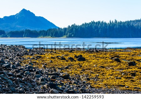 Alaska Landscape - stock photo
