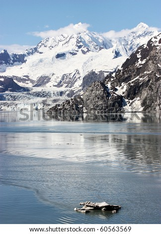Alaska Mountains in Glacier Bay - stock photo