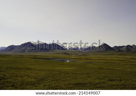 Alaska wilderness oil pipeline - stock photo