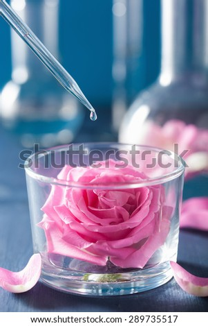 alchemy and aromatherapy with rose flowers and chemical flasks - stock photo