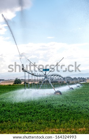 Alfalfa field being watered with a center pivot irrigation system in north central Colorado, USA - stock photo