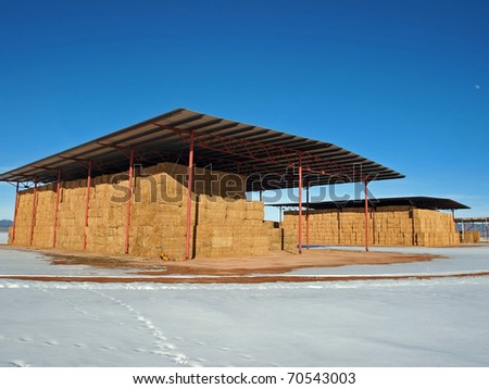 Alfalfa stored for the winter in open sided hay barns. - stock photo