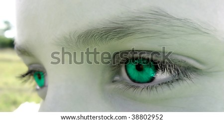 All is green - stock photo