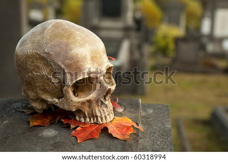 All Saint's scene with a halloween skull in an autumn graveyard - stock photo