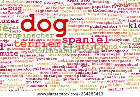 All Types of Dogs and Every Breed as Concept - stock photo