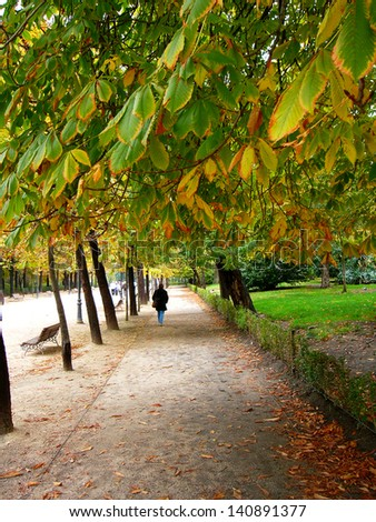 Alley in old park of Madrid in autumn - stock photo