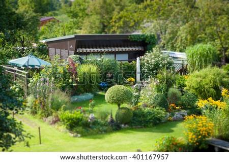 Allotment garden, very idyllic, green, flowers. Sunshine. Miniature. - stock photo
