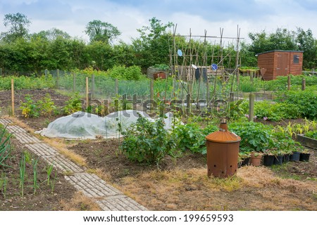Allotment scene with incinerator - stock photo
