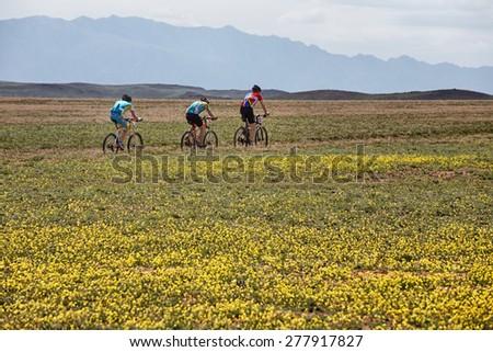 "ALMATY, KAZAKHSTAN - MAY 1, 2015: S.Kruiglikov (N25) and other in action at Adventure mountain bike marathon ""Jeyran Trophy 2015"" - stock photo"