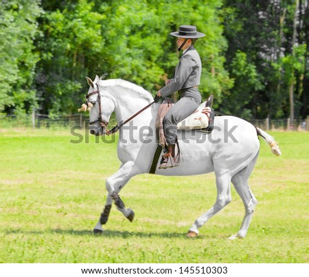 ALMERE - JULY 7: Equestrian Mieke Hylkema shows off her horse riding skills in a Spanish-themed act during the annual Horse & Outdoor horse show, July 7, 2013 in Almere, The Netherlands - stock photo