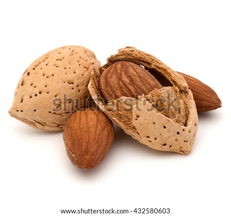Almond nut in shell and shelled isolated on white background close up - stock photo